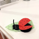 ladybird-craft